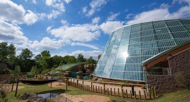 Glass facade of Zoo Atlanta building